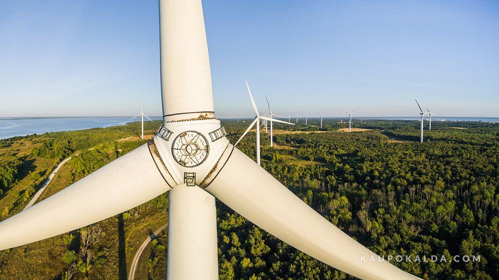 Roheline energia (Pakri tuulepark)
