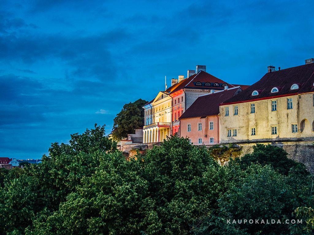 Pray for Nice / Estonia