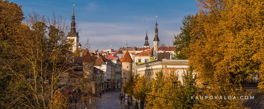 Sügis Tallinnas